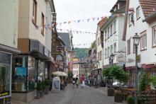 Lions Marktheidenfeld_13.jpg - Stadtrundgang in Marktheidenfeld