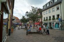 Lions Marktheidenfeld_18.jpg - Stadtrundgang in Marktheidenfeld