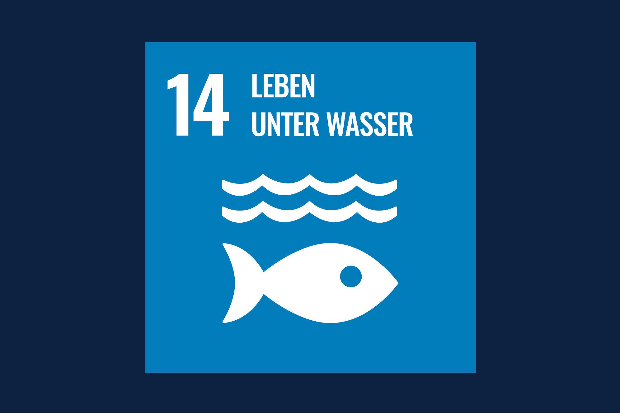 Icon für das Ziel 14 – Leben unter Wasser