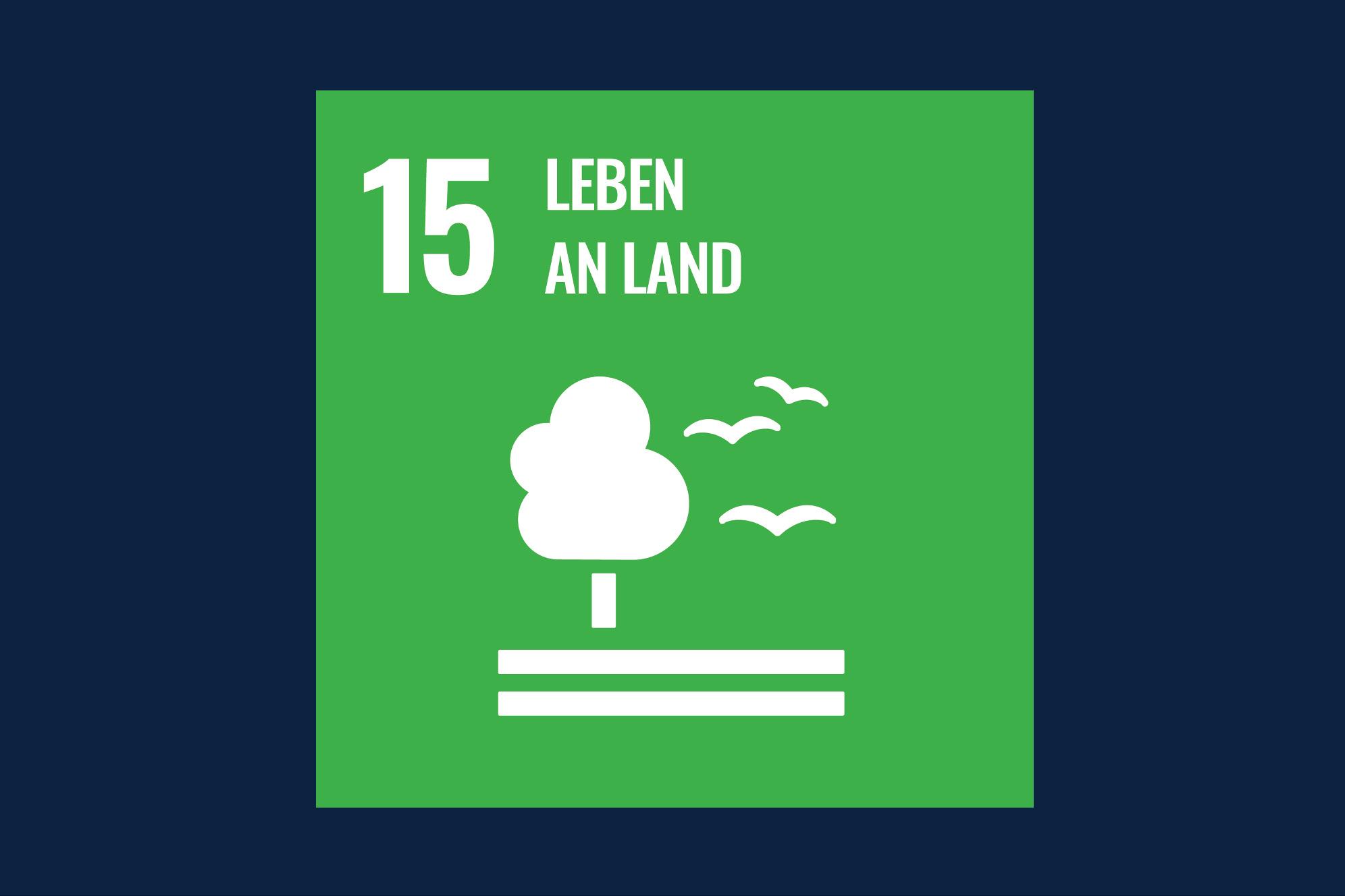 Icon für das Ziel 15 – Leben an Land