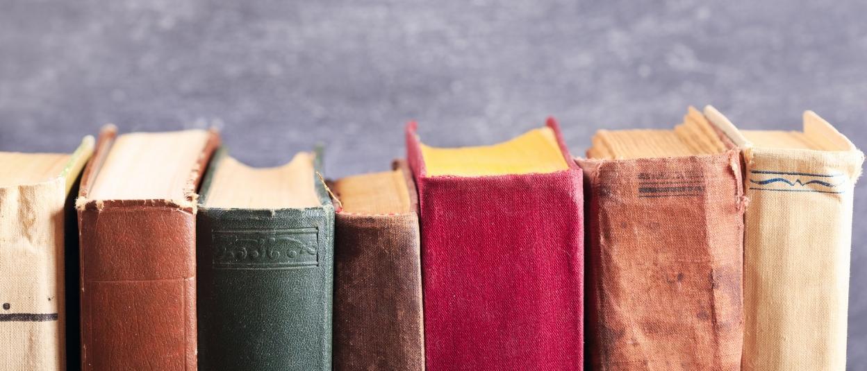 Aneinandergereihte Buchrücken gebrauchter Bücher
